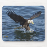 Fishing Bald Eagle Wildlife Mousepad