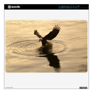 Fishing Bald Eagle Wildlife Photo, Animal-lovers Decal For The MacBook Air