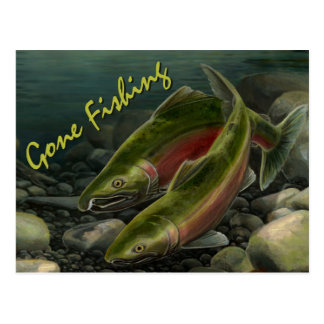 Fishing Bear Postcard Custom Salmon Fish Postcards