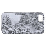 Fishing Boat, Winter Forest, Christmas Snowstorm iPhone 5 Cases