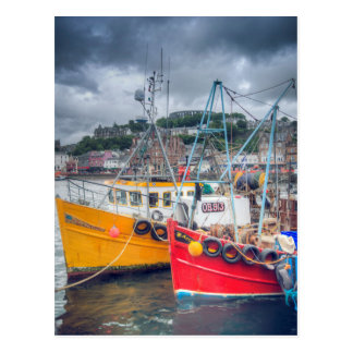 Fishing Boats in Oban Harbour Postcard