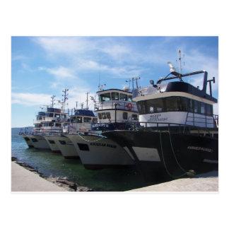 Fishing Boats On The Bosporus Postcard