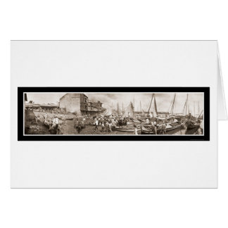 Fishing Boats Panama Photo 1909 Card