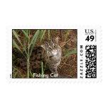 Fishing Cat Stamp, Fishing Cat