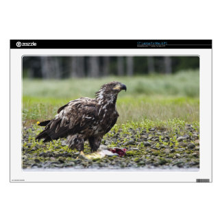 """Fishing eagle 17"""" laptop skin"""