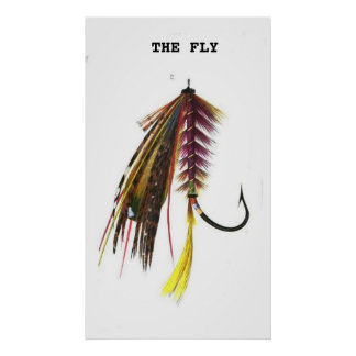 fishing fly poster