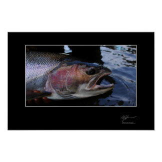 Fishing for steelhead in BC Posters