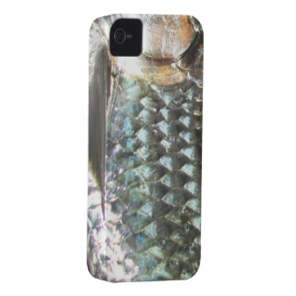 Fishing Fury iPhone 4/4S Case (Tarpon)
