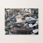 Fishing Gear and a Fish on Shore Puzzles