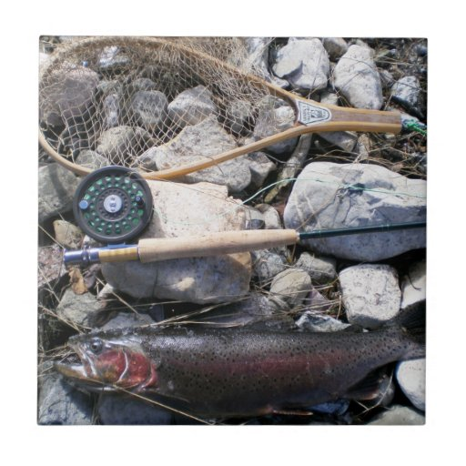 Fishing Gear and Fish on Shore Tile