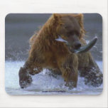 FISHING GRIZZLY BEAR & SALMON Wildlife Mousepad Mousepad