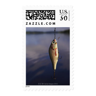 fishing lure in front of water postage