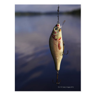 fishing lure in front of water postcard