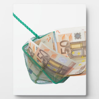 Fishing net filled with euro notes plaque