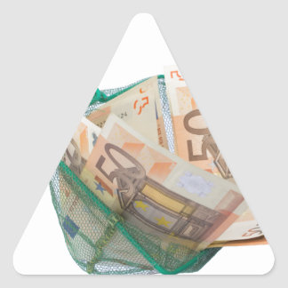 Fishing net filled with euro notes triangle sticker