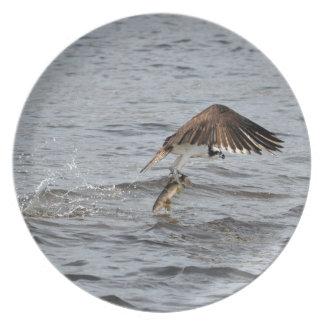 Fishing Osprey & Catch 3 Wildlife Photo Melamine Plate