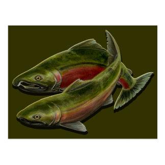 Fishing Postcard Custom BC Wildlife Postcards