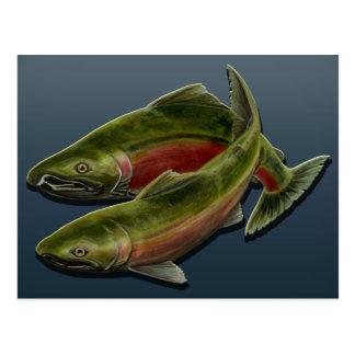 Fishing Postcard Custom Salmon Fish Art Postcards