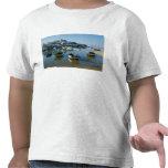 Fishing Village of Ferragudo, Algarve, Portugal Tee Shirts