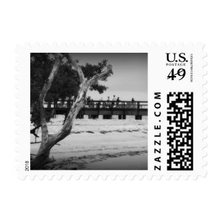 Fishing without color postage