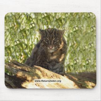 FishingCat006 copy Mouse Pad