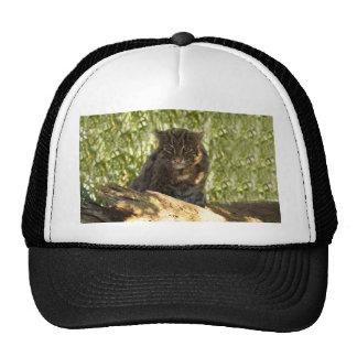 FishingCat006 Trucker Hat