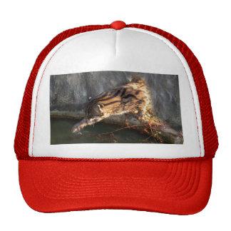 FishingCat009 Trucker Hat