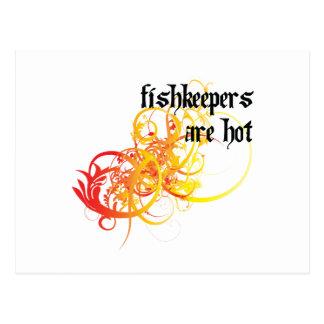 Fishkeepers es caliente tarjetas postales