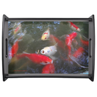 Fishpond Tray