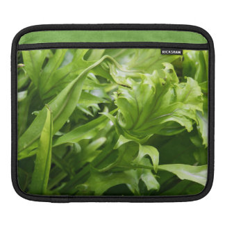 Fishtail Fern iPad Sleeve (or for macbook air)