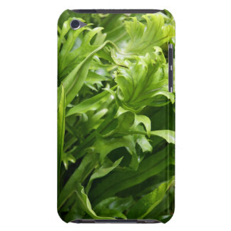 Fishtail FernCase-Mate iPod Touch Barely There Case-Mate iPod Touch Case