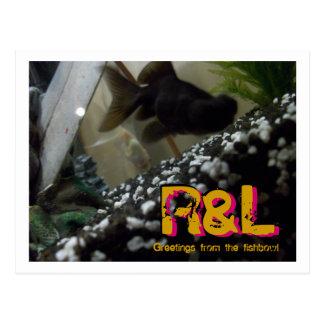 Fishtank de los saludos de R&L Postales