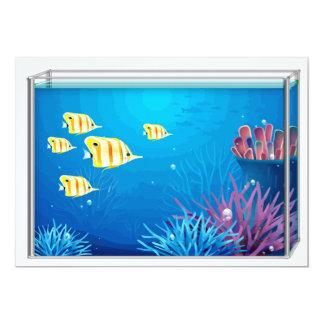 FishTank tropical Comunicado Personalizado