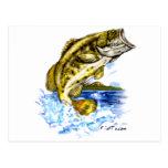 FishTs Designer Series Post Card