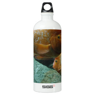 Fishy Face Only Momma Fish Would Love SIGG Traveler 1.0L Water Bottle
