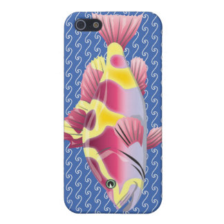 fishy fishy cases for iPhone 5