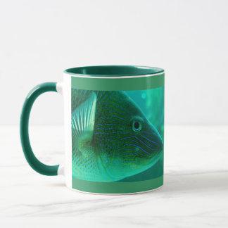Fishy, Fishy Mug