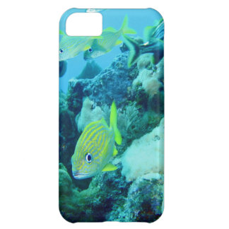 Fishy Frolic Case For iPhone 5C