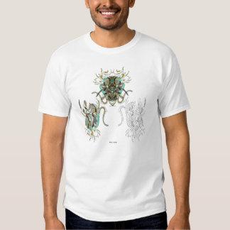 fisp t shirt