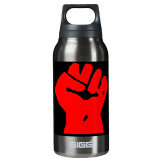 fist 10 oz insulated SIGG thermos water bottle