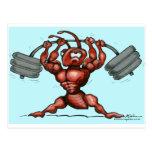 Fitness Dude Postcard