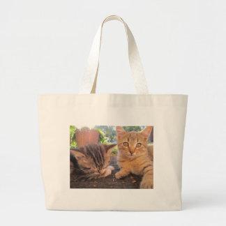 Fitsy and Jaga kitties Tote Bag