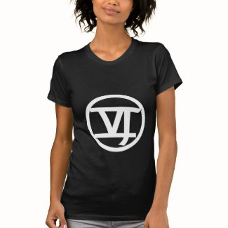 Fitted Logo VI T-Shirt (black)