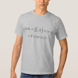 Fitted shirt: Schrodinger wave equation, printed T Shirt