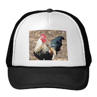 Five AM Alarm Trucker Hat