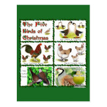 Five Birds of Christmas Postcard