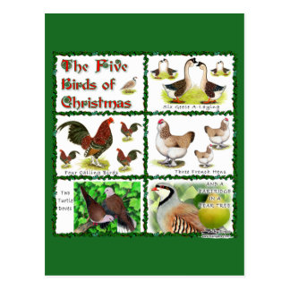 Five Birds of Christmas Postcard