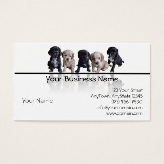 Five Black and Tan Cocker Spaniel Puppies Business Card