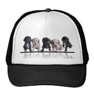 Five Black and Tan Cocker Spaniel Puppies Cap Hat