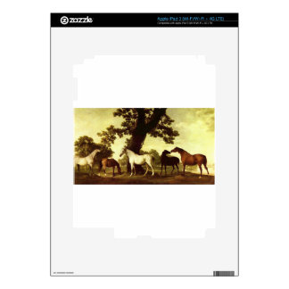 Five Brood Mares by George Stubbs Decal For iPad 3